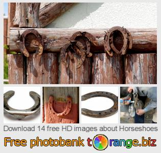 images free photo bank tOrange offers free photos from the section:  horseshoes