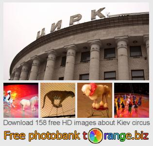 Image bank tOrange offers free photos from the section:  kiev-circus