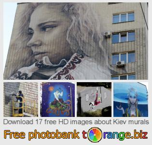 images free photo bank tOrange offers free photos from the section:  kiev-murals