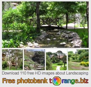 images free photo bank tOrange offers free photos from the section:  landscaping