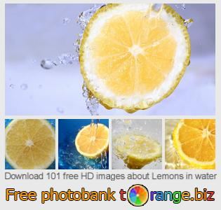 images free photo bank tOrange offers free photos from the section:  lemons-water