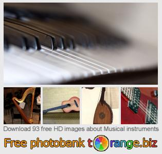 Image bank tOrange offers free photos from the section:  musical-instruments