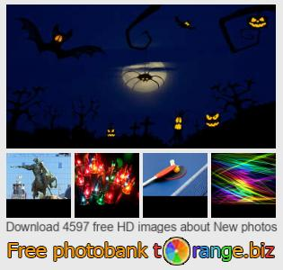 Image bank tOrange offers free photos from the section:  new-photos