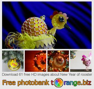 images free photo bank tOrange offers free photos from the section:  new-year-rooster