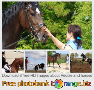 Image bank tOrange offers free photos from the section:  people-horses