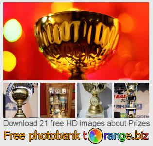 images free photo bank tOrange offers free photos from the section:  prizes