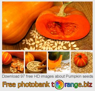 images free photo bank tOrange offers free photos from the section:  pumpkin-seeds