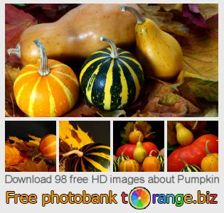 images free photo bank tOrange offers free photos from the section:  pumpkin