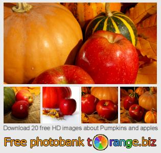 images free photo bank tOrange offers free photos from the section:  pumpkins-apples