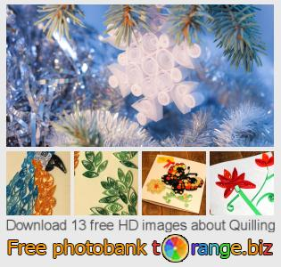 images free photo bank tOrange offers free photos from the section:  quilling