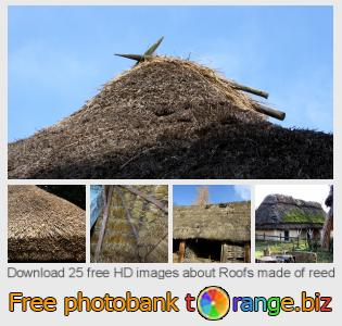 Image bank tOrange offers free photos from the section:  roofs-made-reed