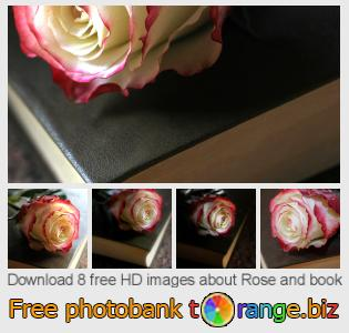 images free photo bank tOrange offers free photos from the section:  rose-book