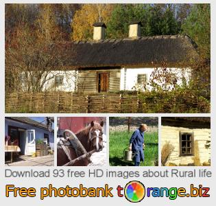 Image bank tOrange offers free photos from the section:  rural-life