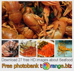 images free photo bank tOrange offers free photos from the section:  seafood