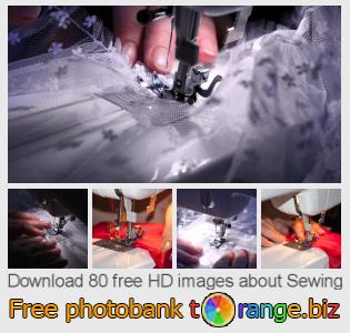 Image bank tOrange offers free photos from the section:  sewing