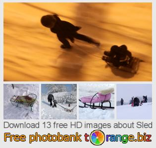 Image bank tOrange offers free photos from the section:  sled