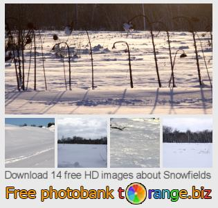 Image bank tOrange offers free photos from the section:  snowfields