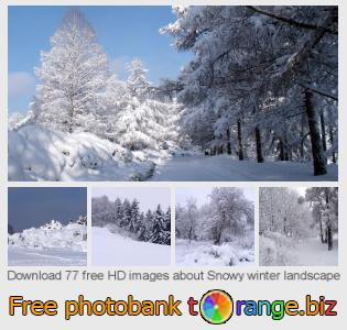 Image bank tOrange offers free photos from the section:  snowy-winter-landscape