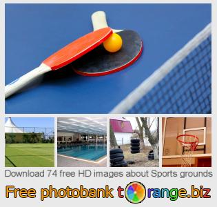 images free photo bank tOrange offers free photos from the section:  sports-grounds