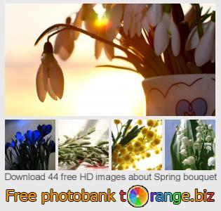 Image bank tOrange offers free photos from the section:  spring-bouquet