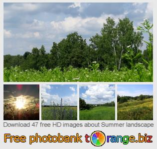 images free photo bank tOrange offers free photos from the section:  summer-landscape