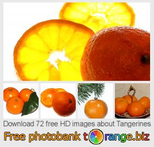 images free photo bank tOrange offers free photos from the section:  tangerines