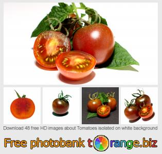 images free photo bank tOrange offers free photos from the section:  tomatoes-isolated-white-background