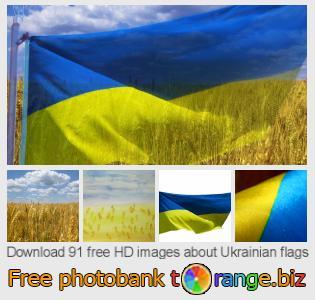 Image bank tOrange offers free photos from the section:  ukrainian-flags