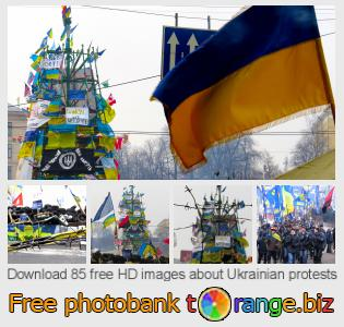 Image bank tOrange offers free photos from the section:  ukrainian-protests