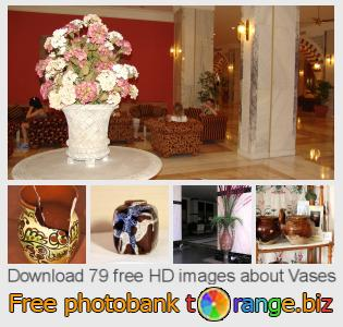 Image bank tOrange offers free photos from the section:  vases