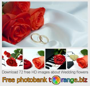 images free photo bank tOrange offers free photos from the section:  wedding-flowers