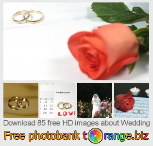 images free photo bank tOrange offers free photos from the section:  wedding