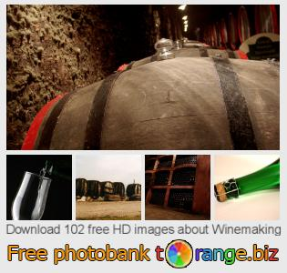 images free photo bank tOrange offers free photos from the section:  winemaking