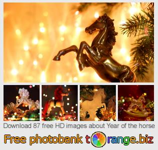 Image bank tOrange offers free photos from the section:  year-horse