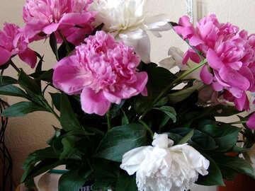 Peony bouquet №880