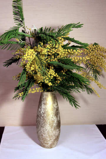 Mimosa bouquet in vase №953