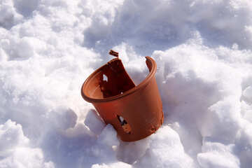 Plastic flowerpot pogryzanny dogs in the snow №725