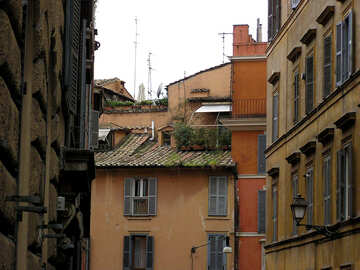 Italian roofs and walls №312