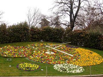 Blumenbeet mit einer Uhr auf dem Rasen. №391