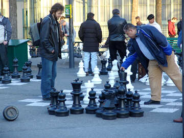 People play chess right on the asphalt №372