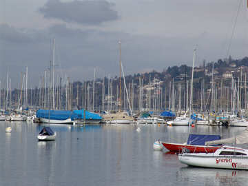 Yachts in the bay under the hill. №444