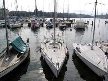 Yachts at moorings. №445