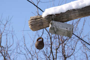 Kettlebell and brick tied to tree to weight №839