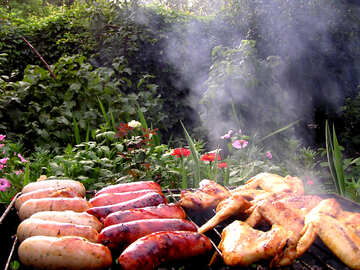 Hot dogs and chicken wings on lattice №340