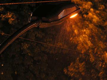Night light and slanting rain
