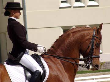 Mädchen auf einem roten Pferd №768