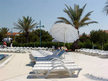 Beach umbrella and loungers by the pool №255