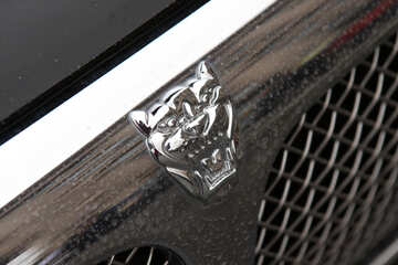 Jaguar emblem on the hood №895