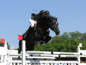 El salto través de la barrera №280