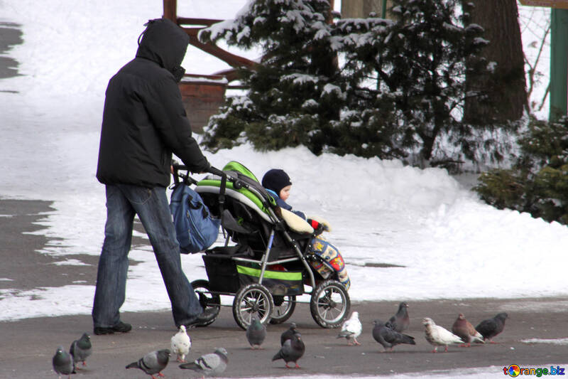 Walks with the baby in the stroller in the winter №838